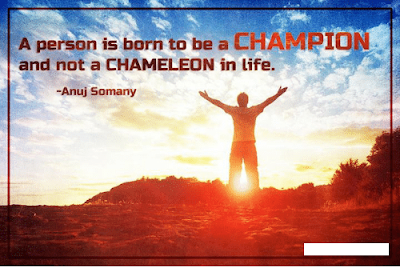 Anuj Somany Quotes About Motivation