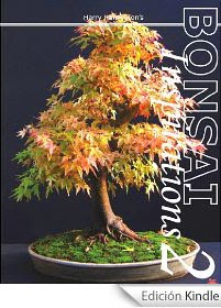 Harry Harrington's Bonsai Inspirations 2