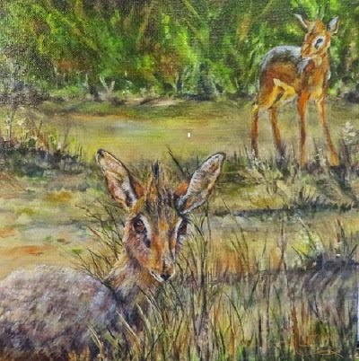 Faithful and True, a pair of Kirk's Dik-Diks