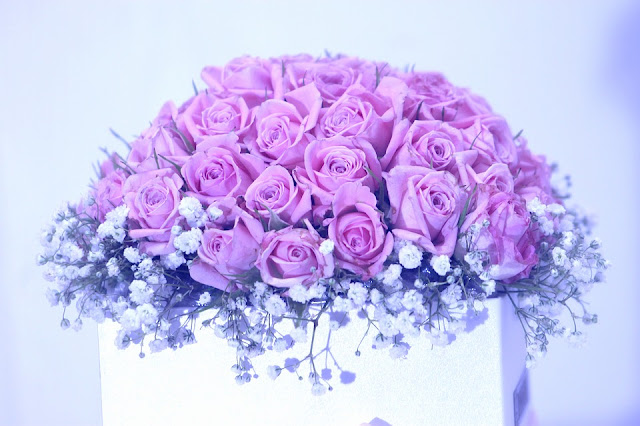 Lavender Roses Images Meaning Pics Wallpapers Photos Pictures Bouquet HD FREE Download