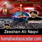 http://www.nohaypk.com/2015/10/zeeshan-ali-naqvi-nohay-2016.html
