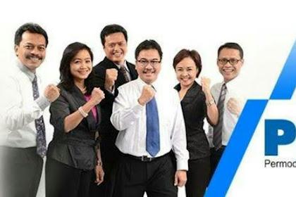 Lowongan Kerja Tingkat Lulusan SMA/SMK/D3/S1 PT. Permodalan Nasional Madani