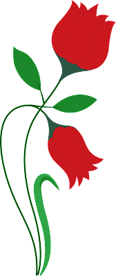 Red Flower, Red Tulip, Flower Vector, Flower PNG, Flower Ai