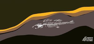 """Serviço Geológico apresenta vídeo didático sobre """"Fósseis e Cavernas"""""""