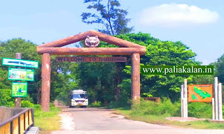 Dudhwa National Park Entry Fee, Safari Cost,