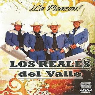 los reales del valle la picazon