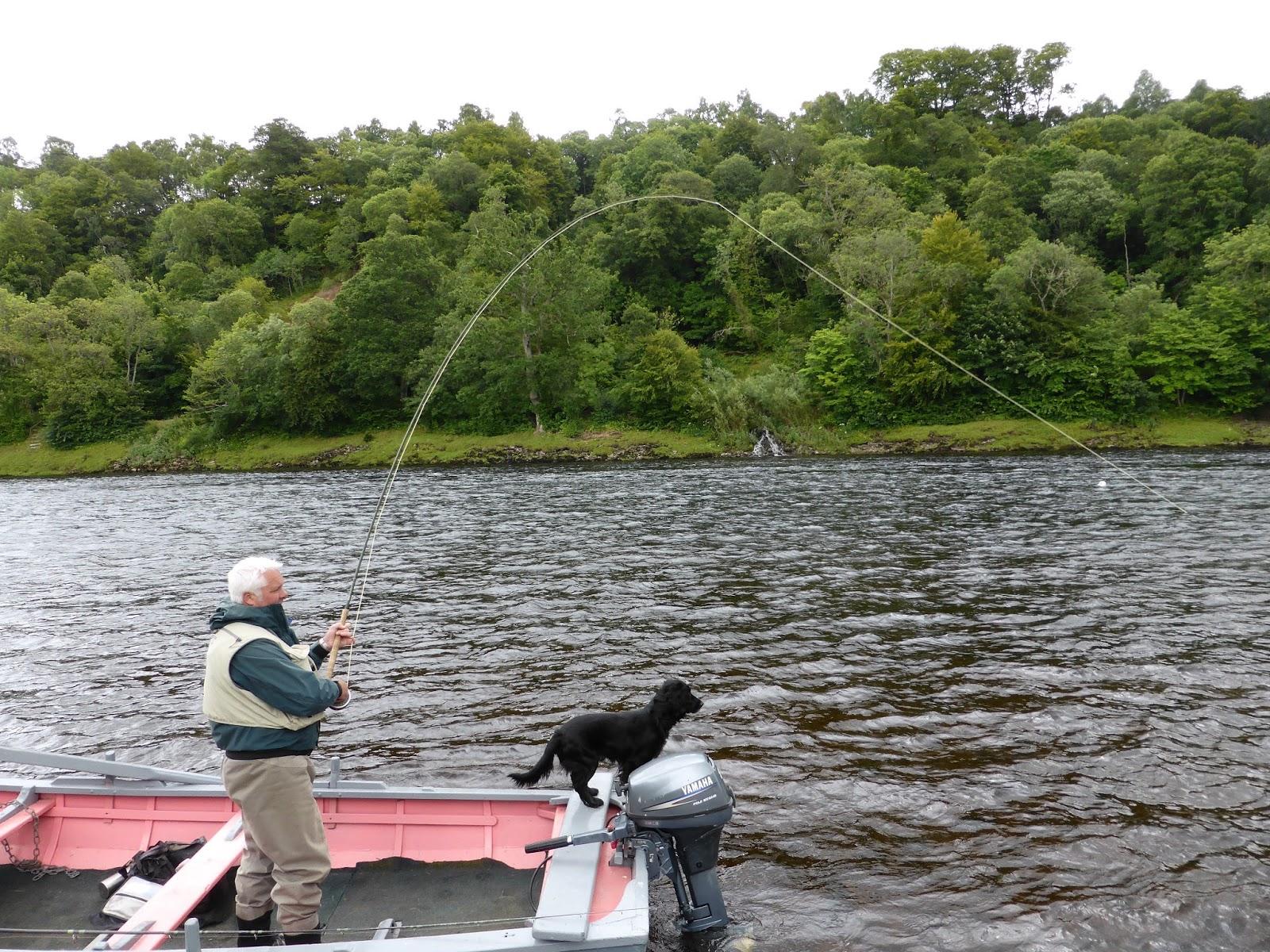 Salmon fishing scotland salmon fishing scotland summer for Salmon fishing colorado