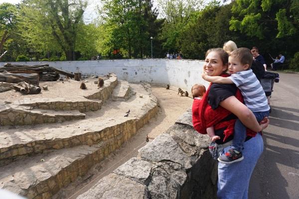 Wrocławskie zoo z chustą maluchem i starszakiem na plecach