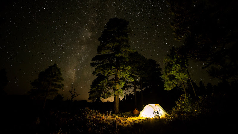 Camping with Tent under the Night Sky
