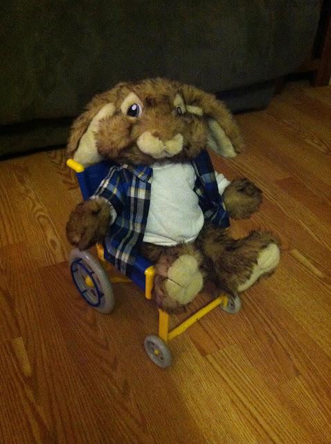 bunny wheelchair