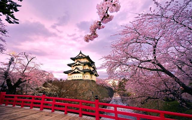Du khách lưu ý cần nên tránh khi du lịch ở Nhật