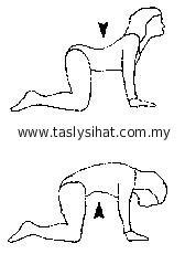 Hilangkan sakit belakang