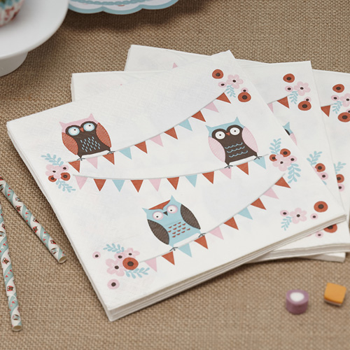 My Owl Barn Patchwork Owl Party Ware By Ginger Ray
