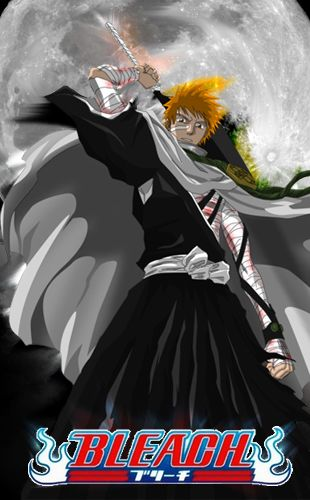 bleach 344 vostfr hd