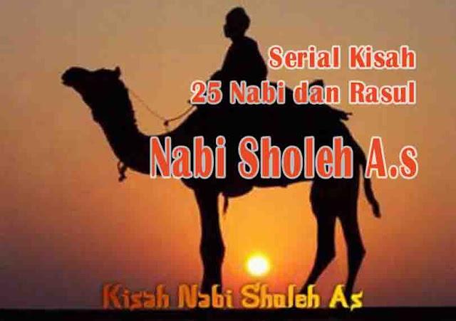 Nabi Sholeh A.s