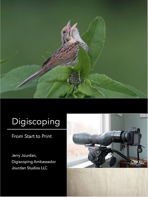 Digiscoping: From Start to Print
