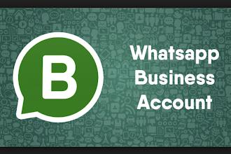 Ecco WhatsApp Business, che ci offre account secondari per il lavoro, anche da numero fisso!