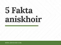 Lima Fakta Tentang Anis Khoir