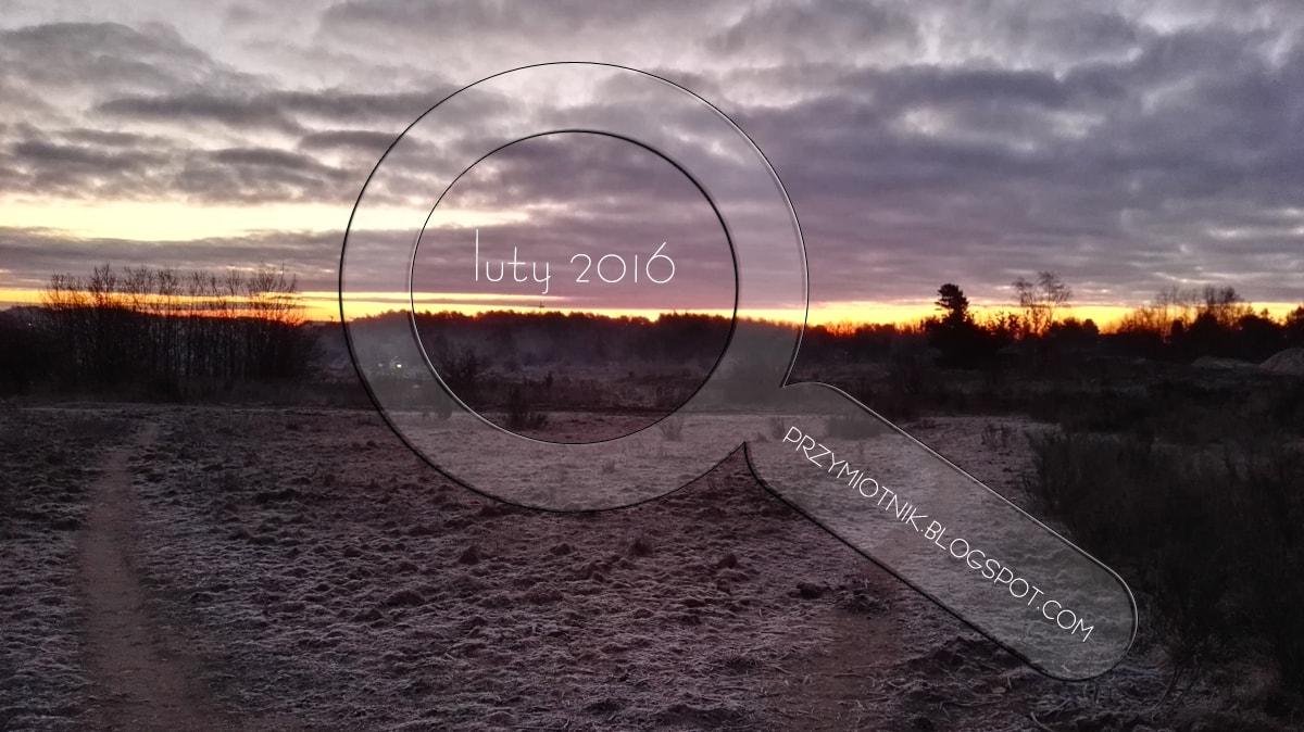 pod lupą: luty 2016