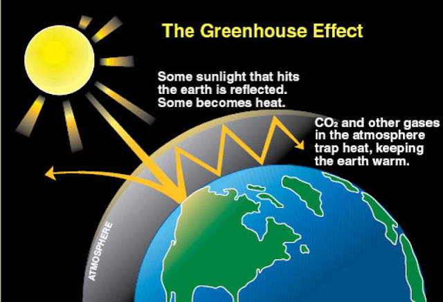 climate change and greenhouse gases essay Climate data and common terms explaining the causes and effects of climate change jump to climate change, global warming and greenhouse gases.