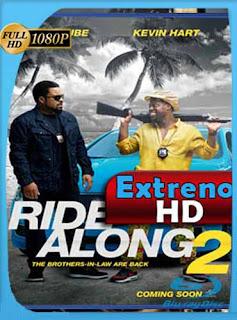 Un Novato En Apuros 2 (Ride Along 2) 2016 HD [1080p] Latino [GoogleDrive]