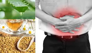 Herbal domestic remedies for hernia
