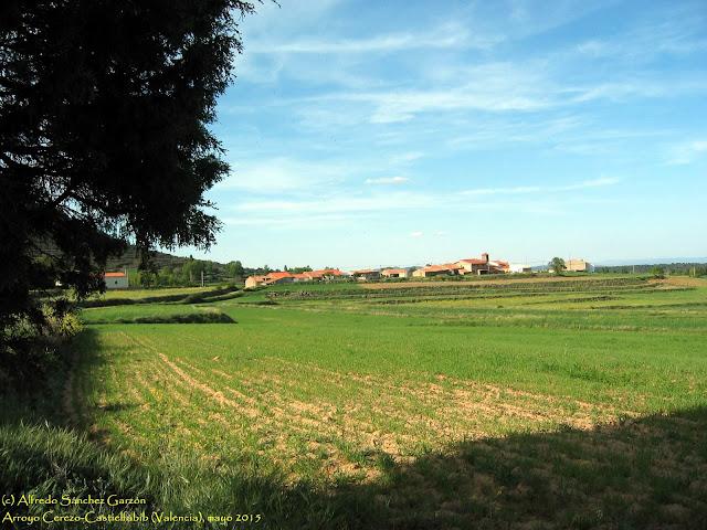 arroyo-cerezo-castielfabib-valencia