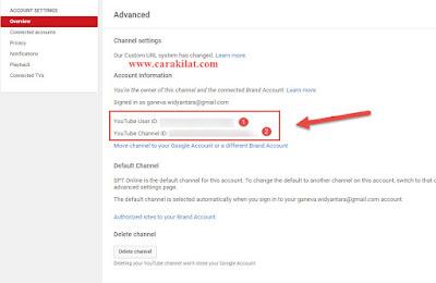 Cara Melihat User ID Youtube dan Channel ID Youtube