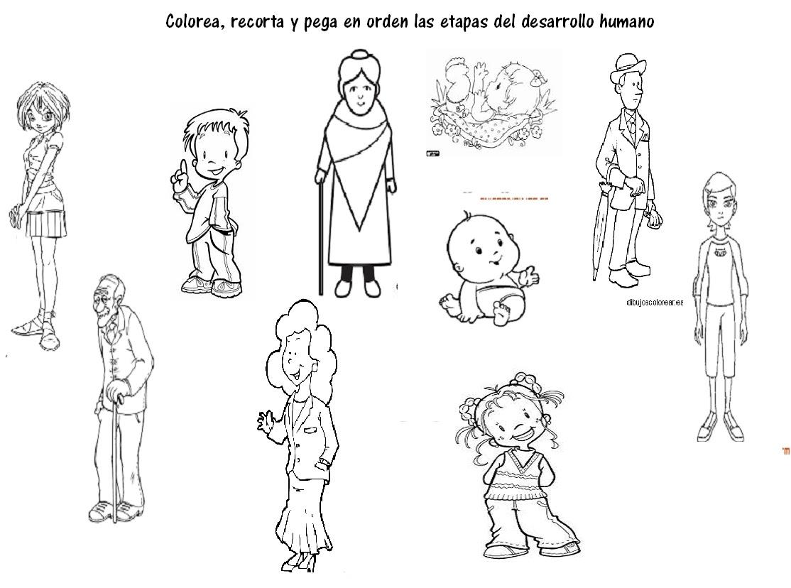 Dibujos Para Colorear De Las Etapas De La Vida Del Ser