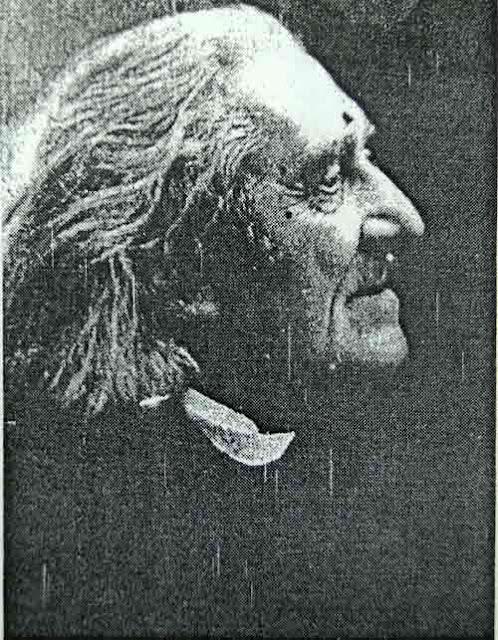 gambar-tokoh-musik-Franz-Liszt