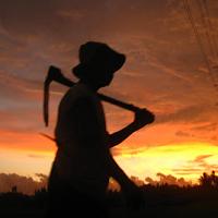 Kumpulan Dongeng Anak Kisah Teladan Petani Tua Yang Jujur