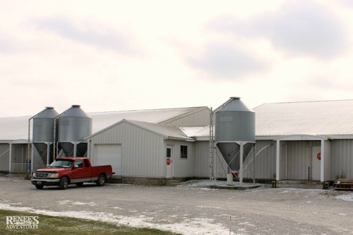 Shoup Brothers Farm