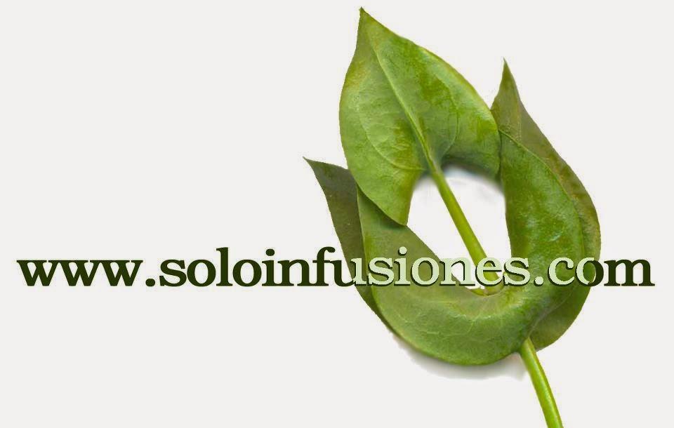 logo de la tienda on line soloinfusiones