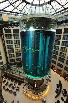 AquaDom el acuario cilíndrico mas grande del mundo.