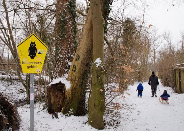 Rund um den Tröndelsee: Unser Winter-Spaziergang mit Schlitten. Auf Küstenkidsunterwegs stelle ich Euch ein tolles Ausflugsziel vor, das wir mit unseren Kindern erkundet haben: Das Naturschutzgebiet und die Umgebung rund um den wunderschönen Tröndelsee bei Kiel. Im Sommer wie im Winter eignet sich der Weg rund um den See gut für Ausflüge mit der ganzen Familie!