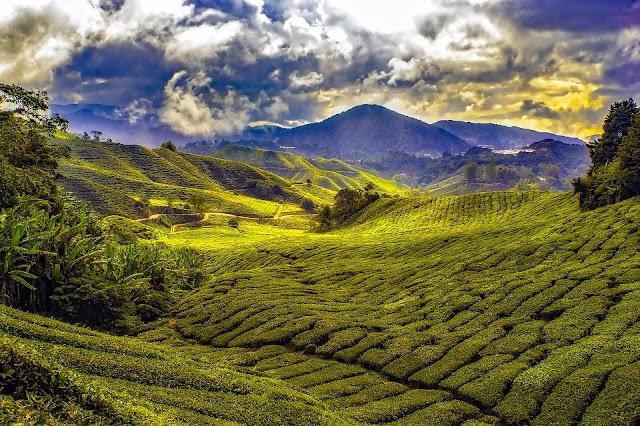 Ideas para un viaje de aventura a Malasia