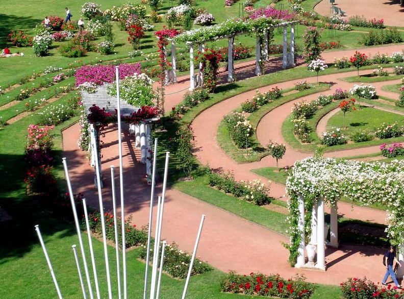 Roseraies - Parc de la Tête d'Or