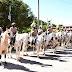Homenagens marcam comemorações aos 30 anos da Cavalaria