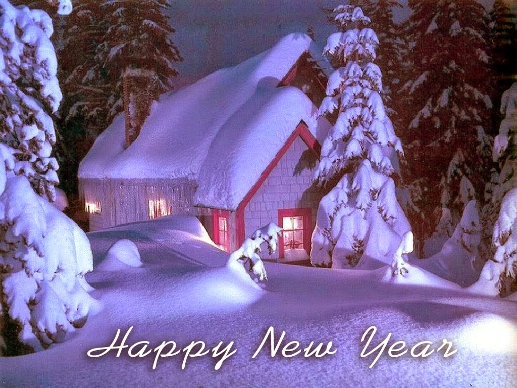 New Year 2019 Snow Fall Night Pics 3D