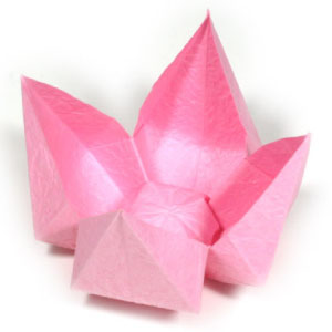 Shoreline area news learn origami flower making at lfp library age origami flowers tuesday may 1 2018 from 7 830pm at the lake forest park library lower level of town center intersection of ballinger and bothell way mightylinksfo