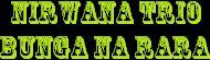kunci gitar nirwana trio bunga na rara
