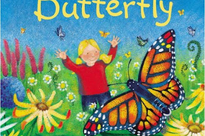 The Lives Of Butterflies