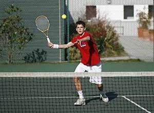 http://www.tutorialolahraga.com/2016/10/pukulan-voli-tenis-lapangan.html