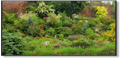 Garteneinblicke