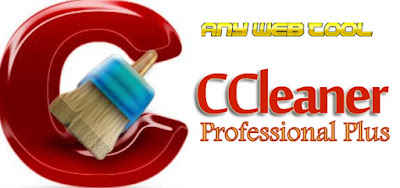 is ccleaner pro a lifetime license