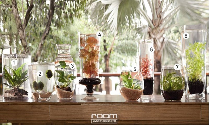 How do you make a flower vase for a betta fish Image