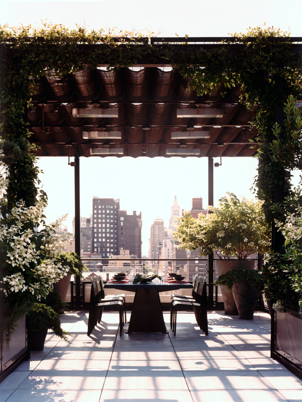 d couvrir l 39 endroit du d cor un toit terrasse manhattan. Black Bedroom Furniture Sets. Home Design Ideas