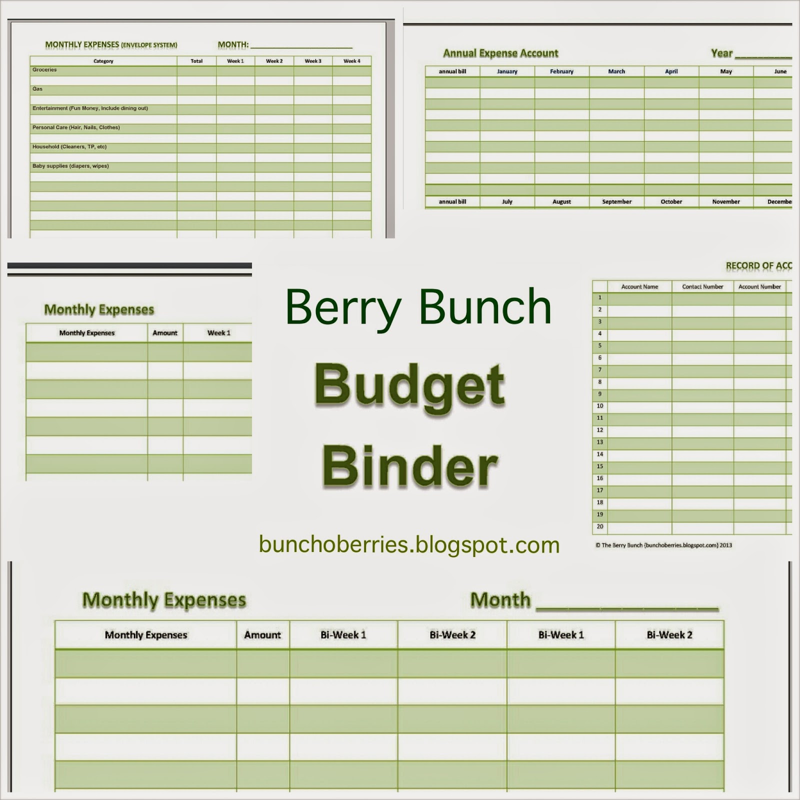 Establish a Budget: Free Budget Printable: Berry Bunch