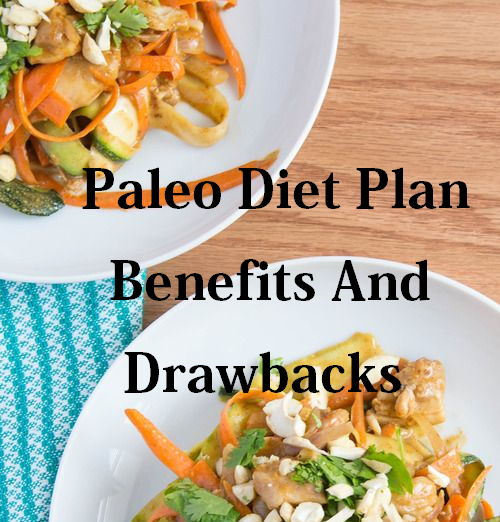 Paleo Diet Plan Benefits And Disadvantages