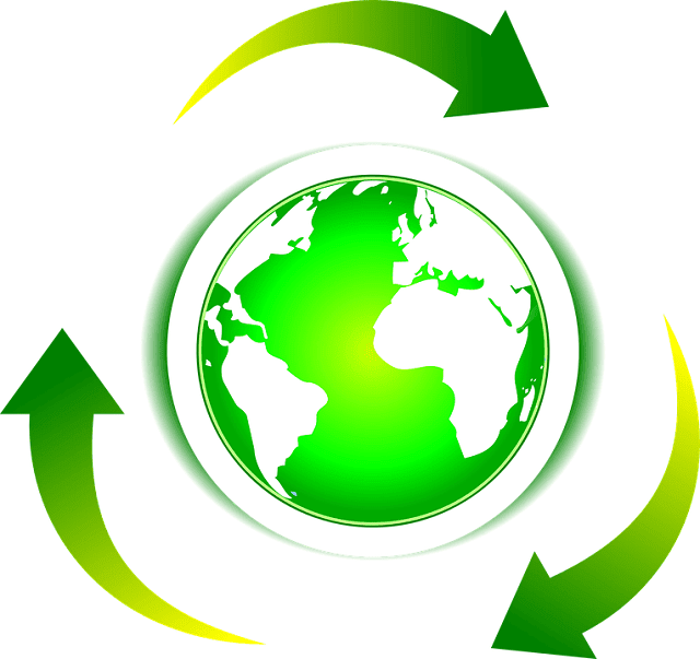 importance recycling waste reduction environmental accountability lean startup living